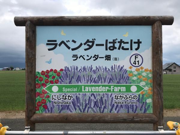 Lavender farm station