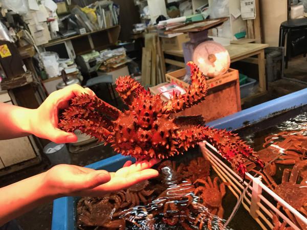 Otaru crab 1